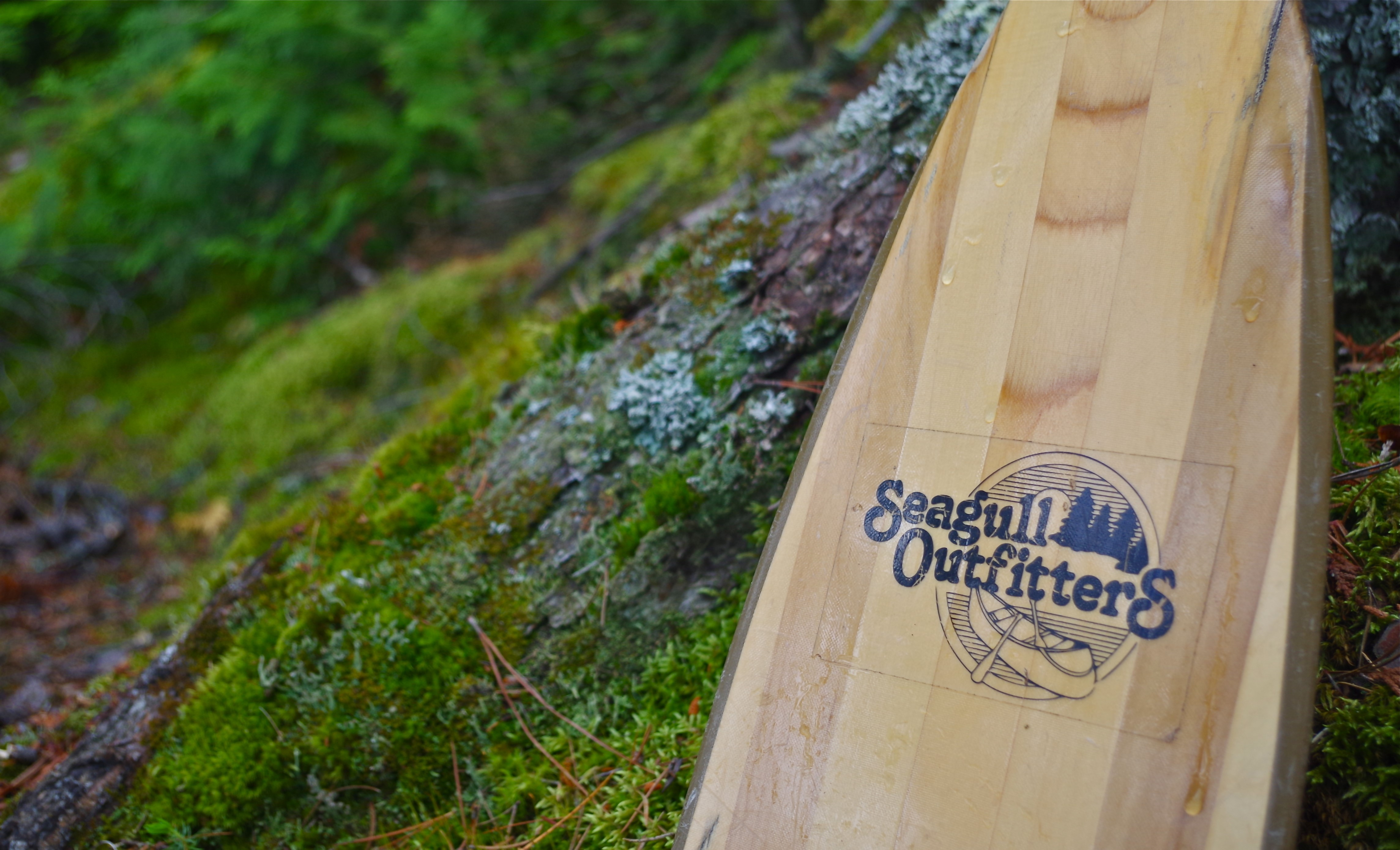 Complete Boundary Waters Outfitter Packages   Seagull Canoe Outfitters